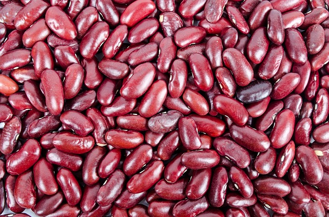 Kidney Beans benefits