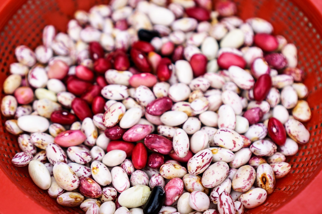 Super Food Beans to Add to Your Diet