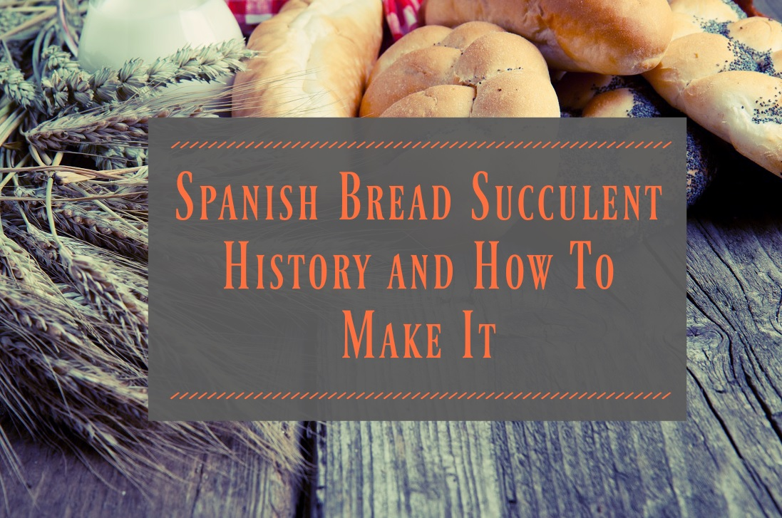 History and How To Make It