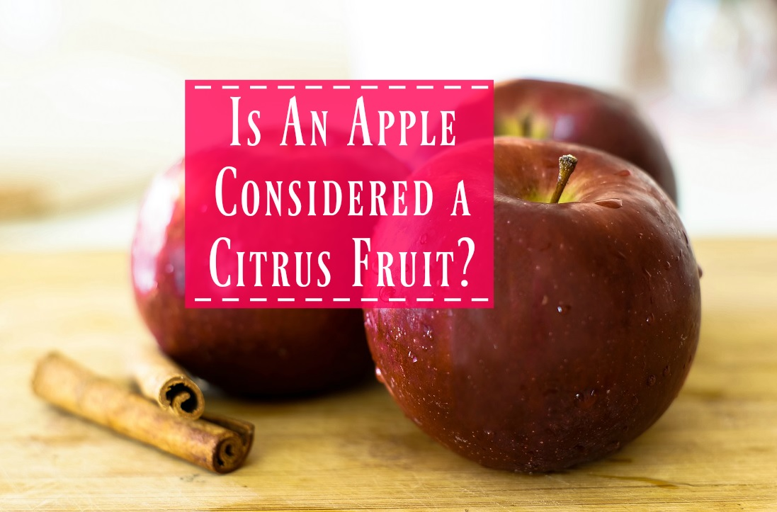 Are Apples Citrus Fruits